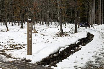 20060409002.jpg