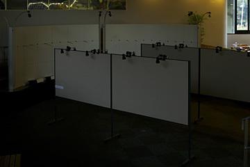 20061029044.jpg